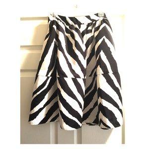 NEW Express A-line Skirt
